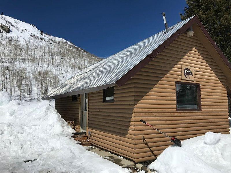 Bears Den Cabin-Clark CO Getaway - Cozy 1 bedroom, holiday rental in Clark