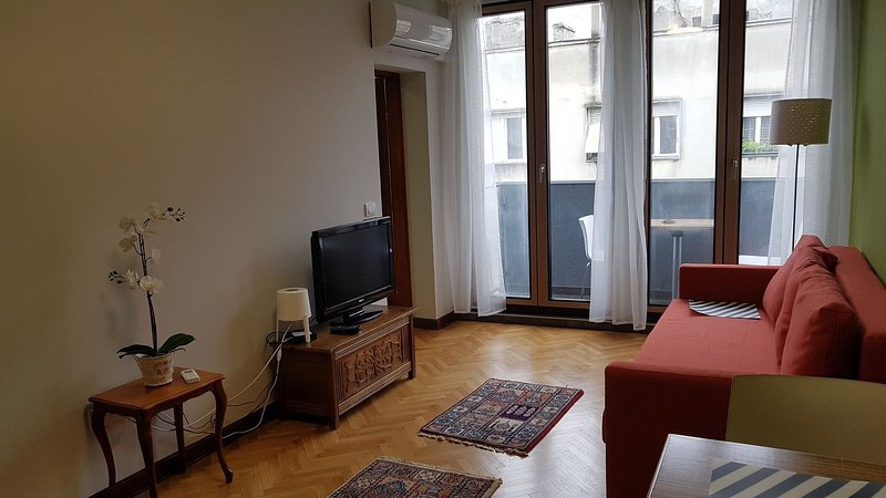 Dobracha 1 bedroom apartment + free parking, holiday rental in Dorcol