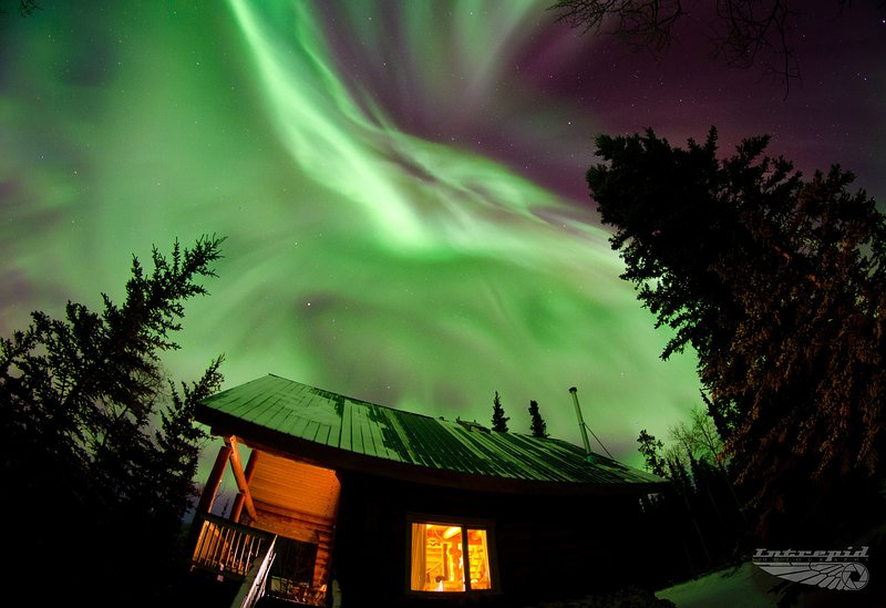 Northern lights above the Cabin. (possibility of sightings between late Aug and mid April)