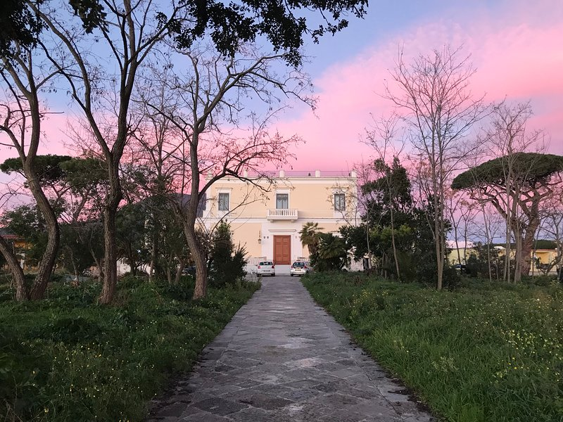Villa Carafa de Cillis, vacation rental in Trecase