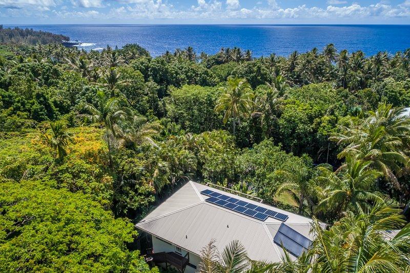 Blue Kehena, whole home vacation rental, is just a short walk to Kehena Black Sand Beach (clothing optional!)