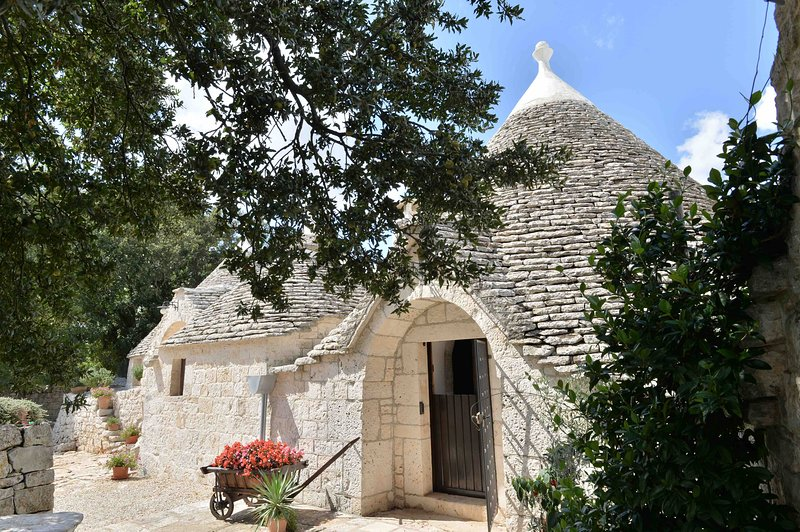 EXECUTIVE APULIA ESTATE, vacation rental in Alberobello