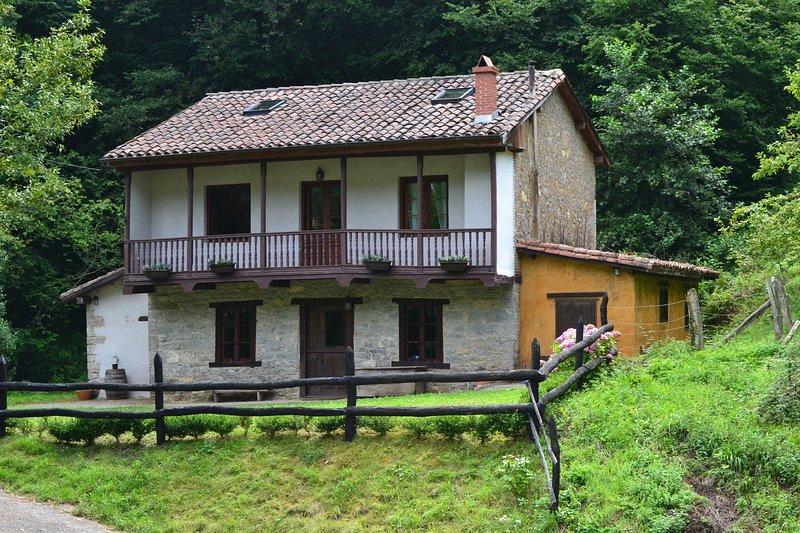 Preciosa casa en un entorno magnífico, holiday rental in Pajares