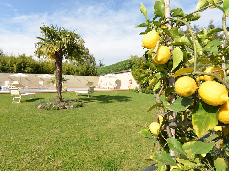 San Piero in Campo Villa Sleeps 8 with Pool Air Con and WiFi - 5247721, location de vacances à Santa Lucia