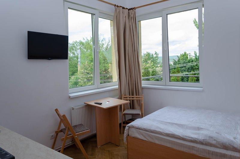 3.4 Casa Pasteur- double studio, vacation rental in Cluj-Napoca