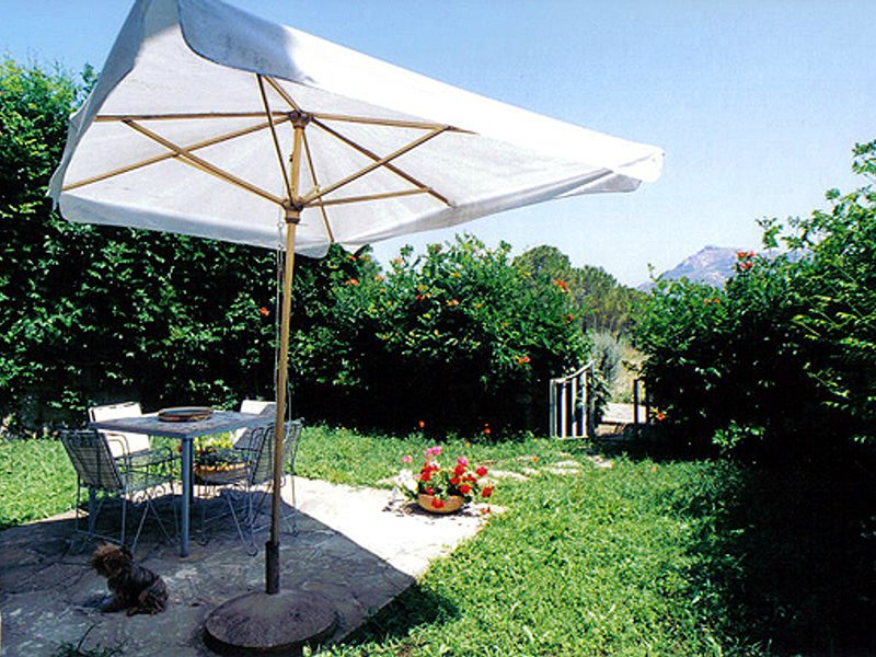 San Salvatore Telesino Apartment Sleeps 4 with Pool Air Con and WiFi - 5248290, vacation rental in Licosa