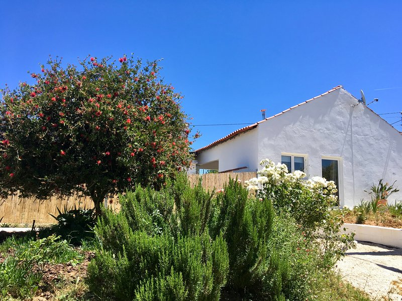 A Casa dos Vinhos - village location with private pool, Ferienwohnung in Vila Nova da Barquinha