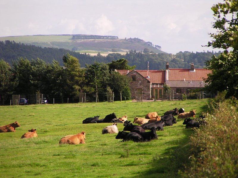 Perfect holiday location in stunning countryside, close to beaches, hills and great attractions.