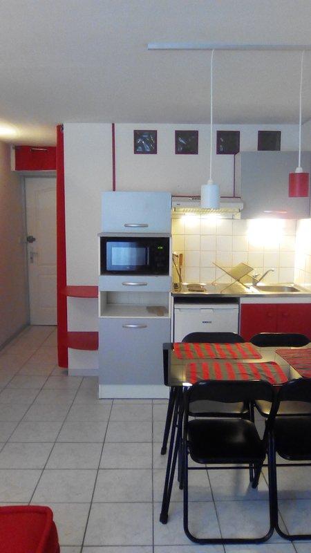 Studio meublé centre historique Auch 32000, vacation rental in Saint-Lary