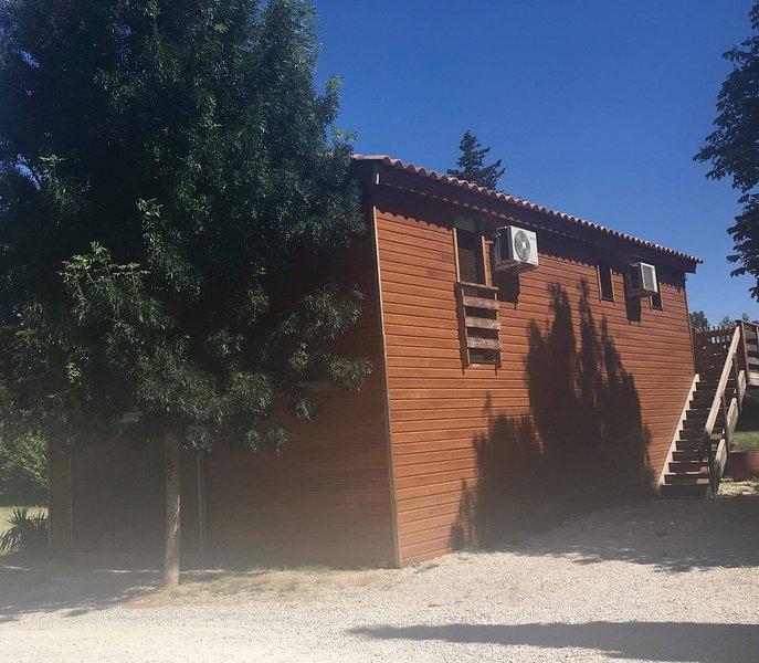 Beautiful rental in Caumont sur Durance near Avignon, holiday rental in Caumont-sur-Durance