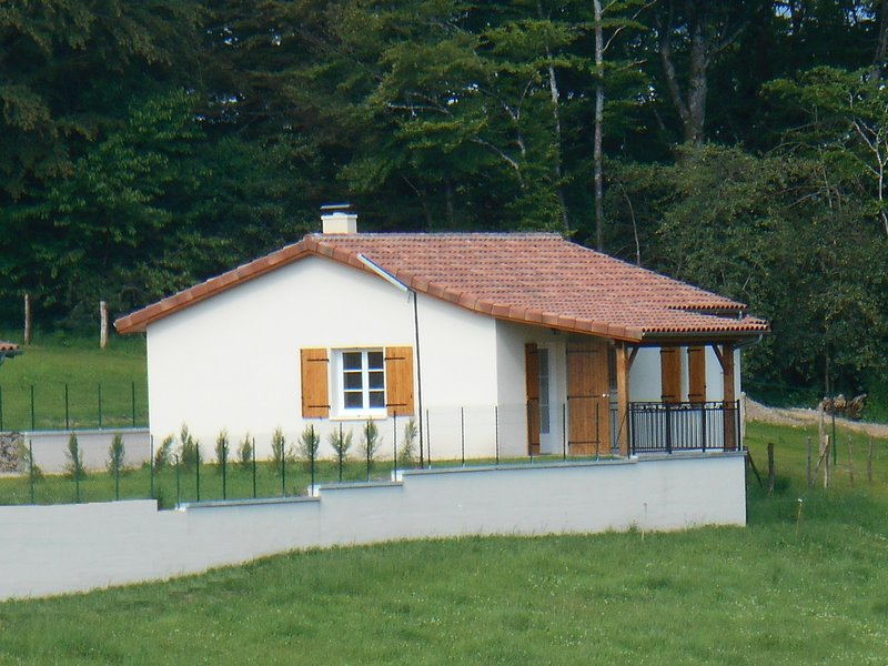 Amazing house with shared pool, holiday rental in Roumegoux