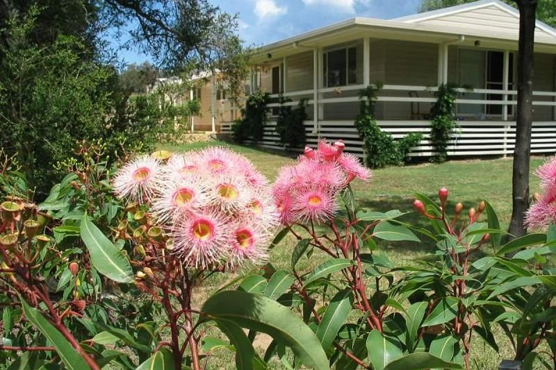 Hunter Valley Accommodation - Capercaillie House - Lovedale - tutto
