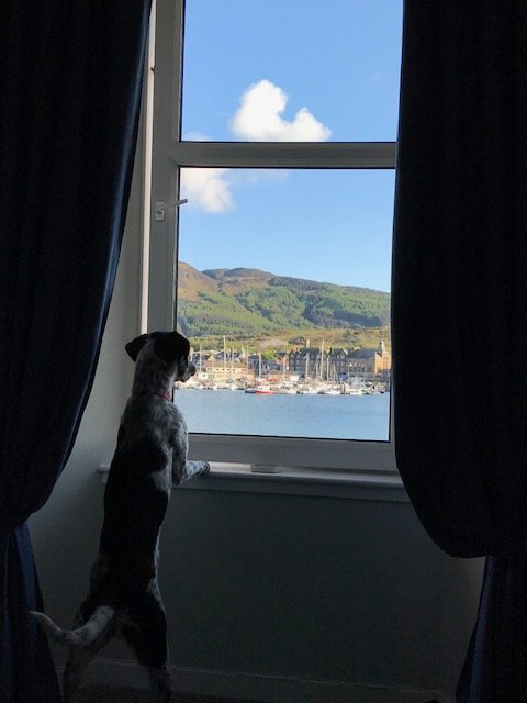 Harbour Holiday Flat, Self Catering Apartment, Campbeltown, vacation rental in Tayinloan