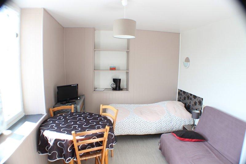 (Std85) Studio** Meublé 1 personne Curiste 150 m Thermes St Roch Centre ville, vacation rental in Lesigny