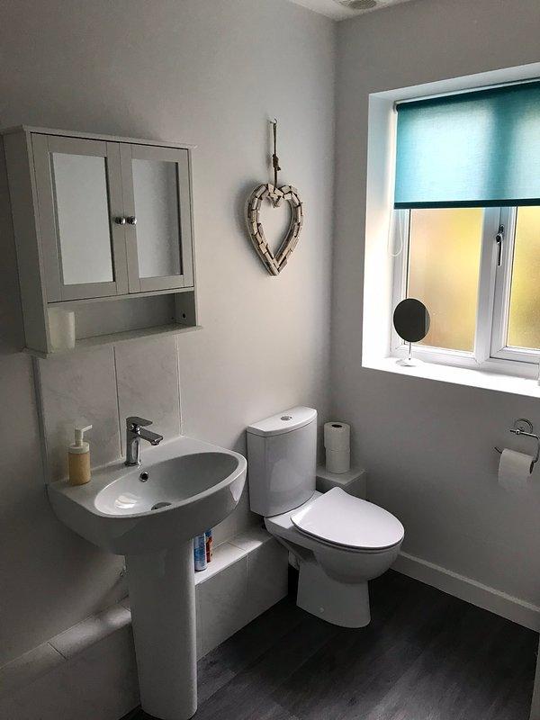 Bathroom. The bath (not shown) has a overhead shower.