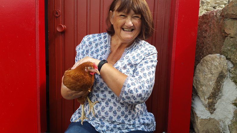 Meet Waddles one of our eight chickens who supply us with yummy eggs.