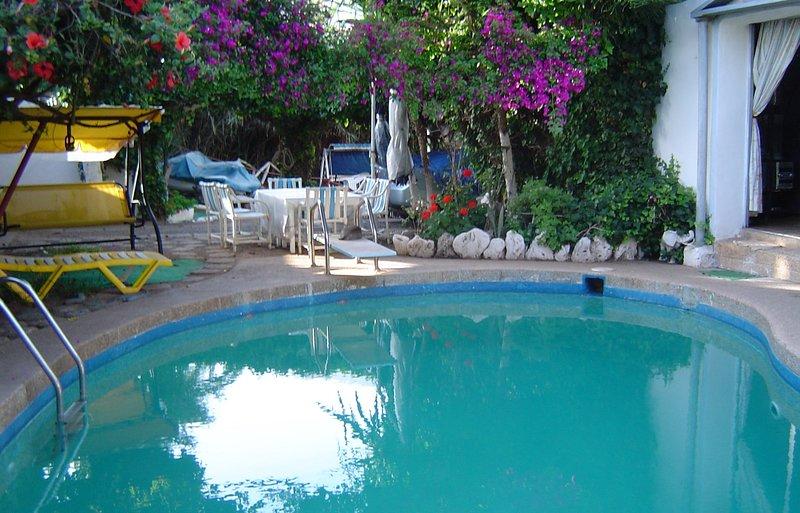 Hermosa piscina en forma de frijol que rodea la villa orientada al sur