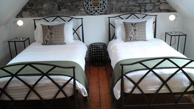 Deux lits simples dans une chambre. Armoire et commode. Belle vue depuis la grande victoire de Velux