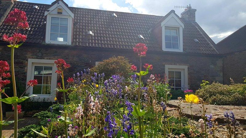 Soleado jardín delantero