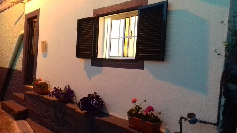 Beautiful studio with sea view, holiday rental in Ribeira Brava