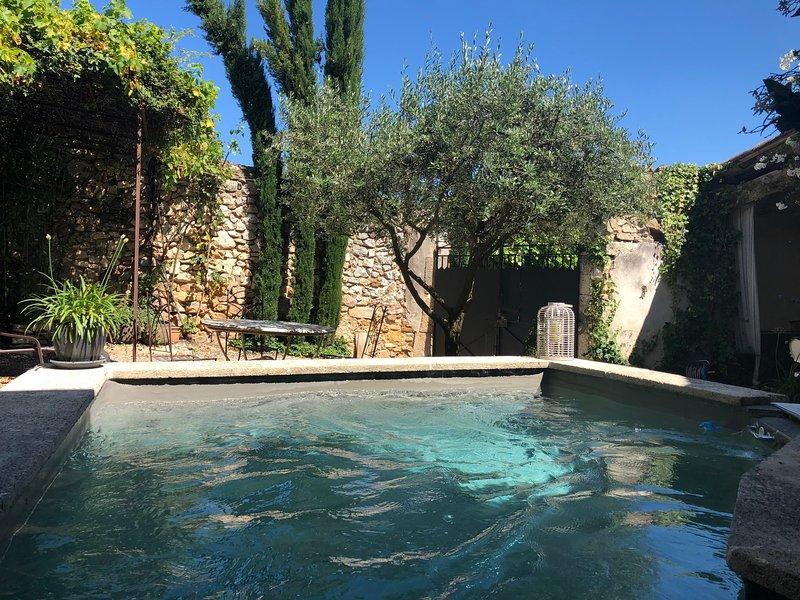 Piscina e giardino recintato
