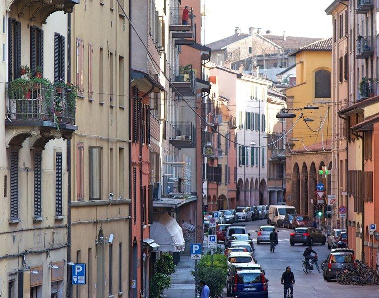 B&B L'Antenna - Camera 'Lady Green', vacation rental in Monte San Pietro