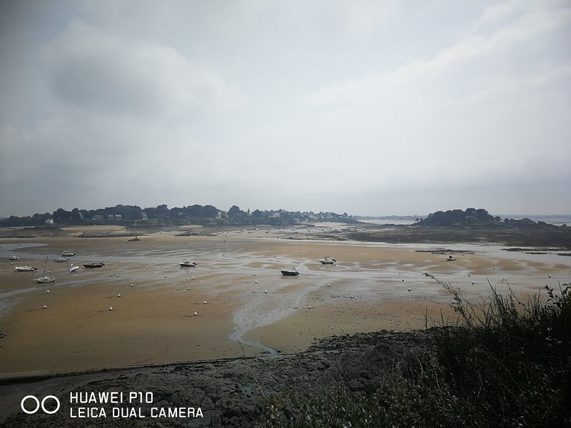 Baie de Saint-Briac/Lancieux