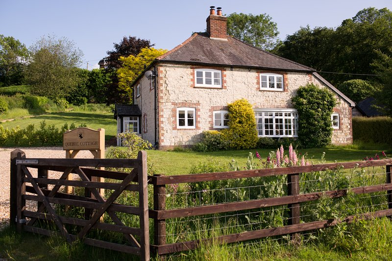 Chocolate Box Cottage In the Heart of the South Downs National Park, holiday rental in East Meon