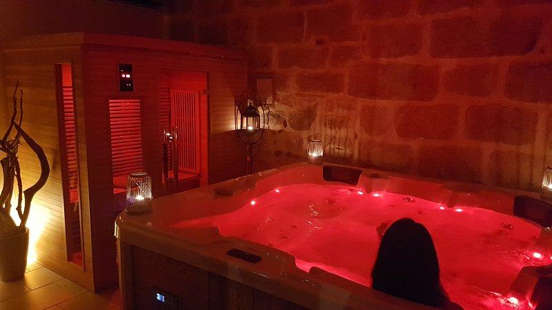 maison de charme jacuzzi ,sauna et piscine privée en camargue, aluguéis de temporada em Sylvereal