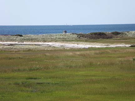 View of Marsh and Nantucket Sound