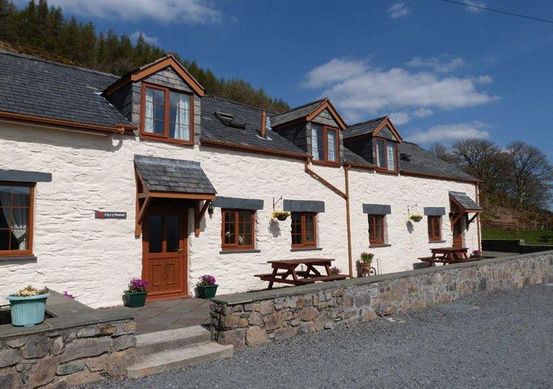 Llys y Wennol, holiday rental in Dolwyddelan