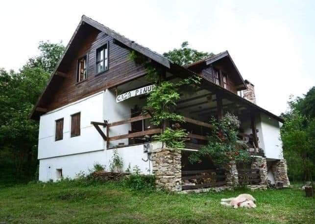 Casa Pinul, casa vacanza a Deva