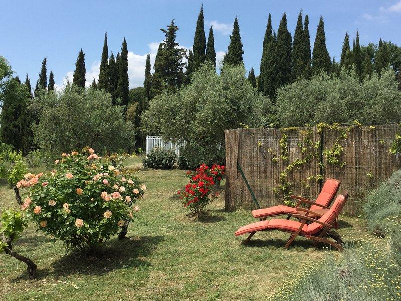 BASTIDON DE CASTEUSE,  Gîte , 3 étoiles,Lourmarin, Luberon , Provence parc,pisci, holiday rental in Lourmarin