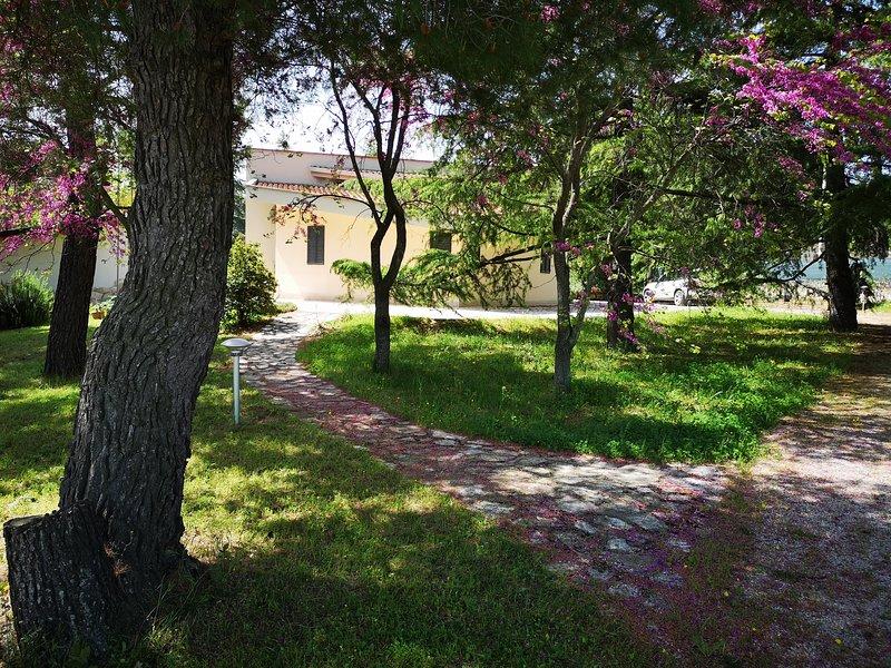 Villa con giardino Castel del Monte, holiday rental in Canosa di Puglia