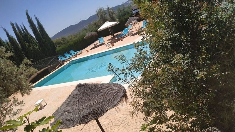 Large pool, without cut-outs to enter or leave, with sunbeds, ashtrays, toilet, bar area