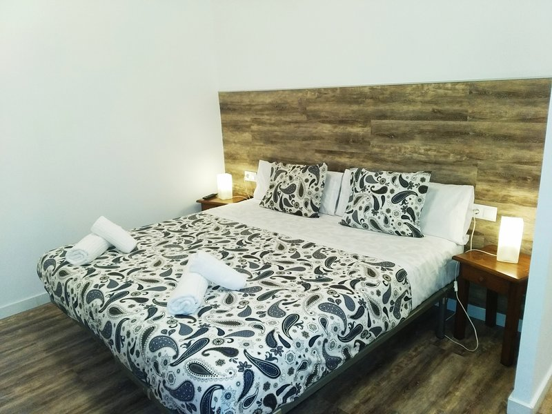 Apartamento 1 habitacion, holiday rental in Ordino