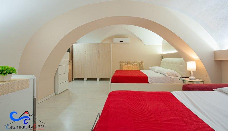 Área de dormir con cama de matrimonio y sofá cama.