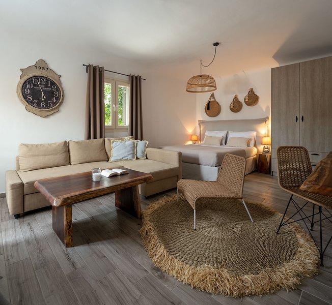 Olive Mykonos Villas - Junior Villa, alquiler vacacional en Ano Mera