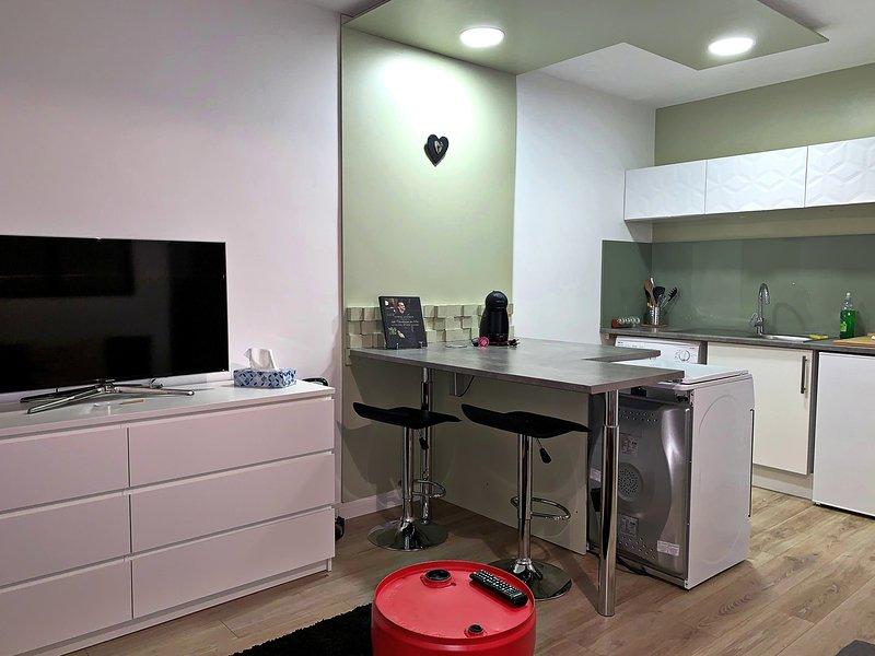Studio en centre ville de Cugnaux (15min de Toulouse), vacation rental in Lagardelle-sur-Leze