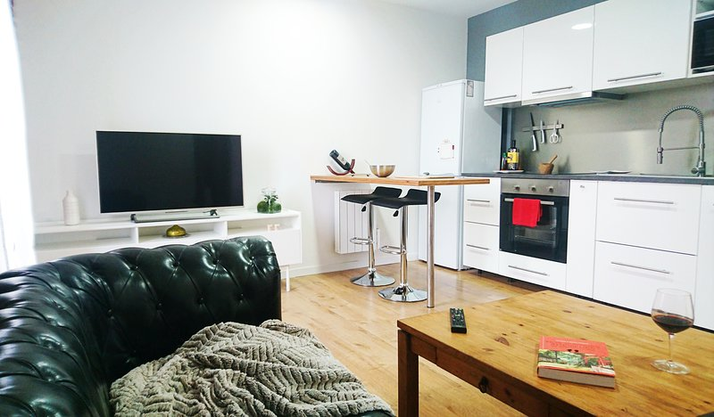 Joli Appartement à Cugnaux (15min de Toulouse), vacation rental in Lagardelle-sur-Leze