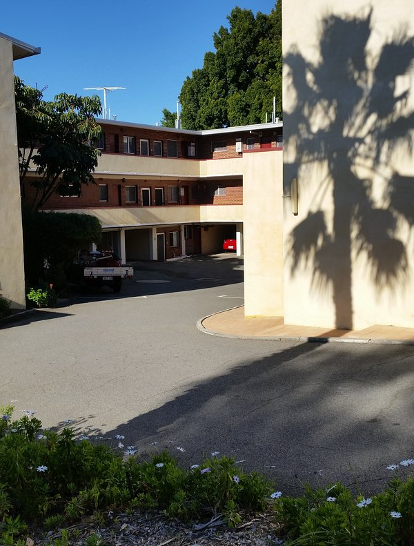Tree shadows on the facade and Monet's Retro Maylands accommodation inside