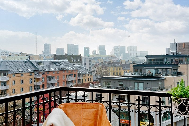 Large BR in central design loft w/NY style views!, alquiler vacacional en Oslo