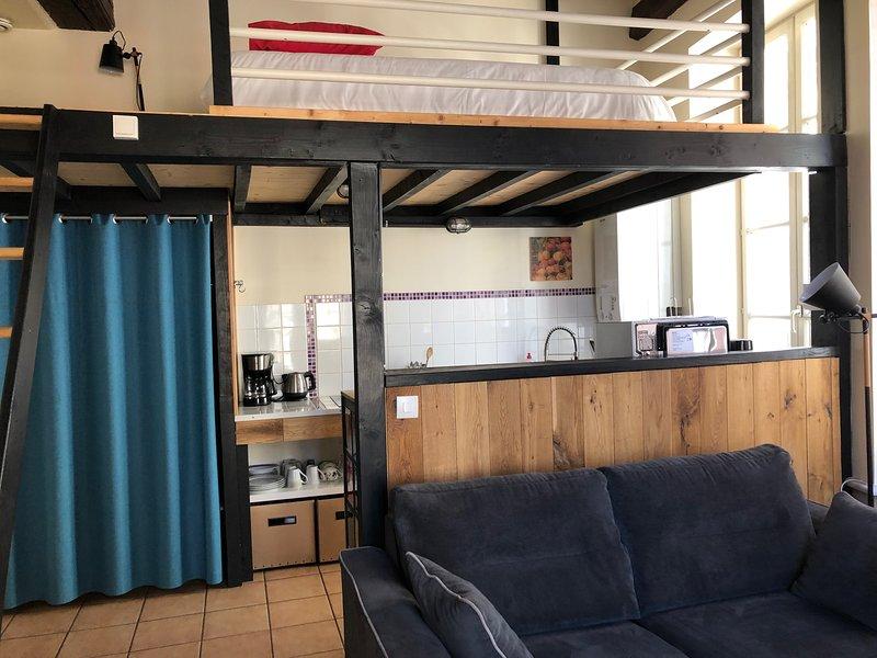 Appartement le Cadet Roussel Auxerre Les Quais, holiday rental in Chablis