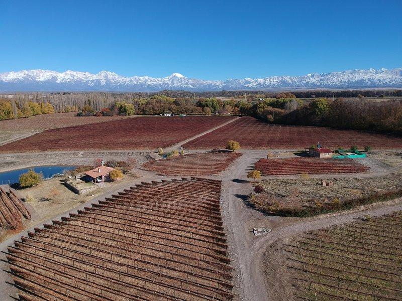 Cabaña del Alto Tupungato alquiler vacacional y vinos CASA CHARDONNAY, vacation rental in Province of Mendoza