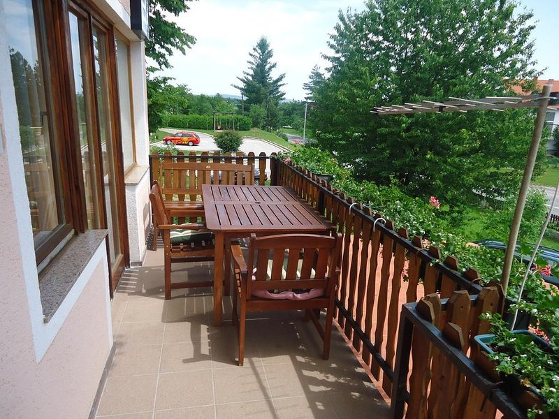 Irinovac Apartment Sleeps 6 with Pool and Air Con - 5806101, holiday rental in Grabovac