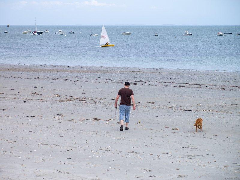 Sträcka av stranden vid midtevatten, precis nerför körfältet från huset