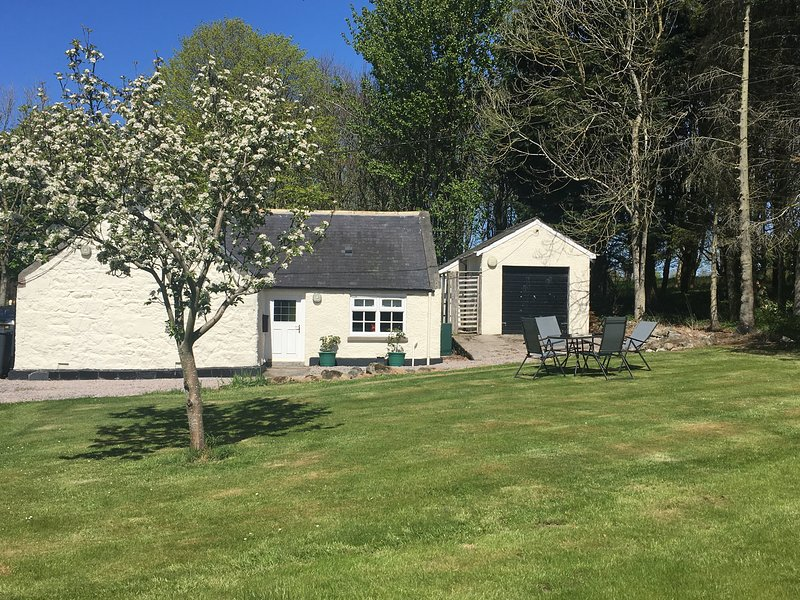 South Lodge, Cosy Cottage in the grounds of a Castle with access to indoor pool, vacation rental in Mintlaw