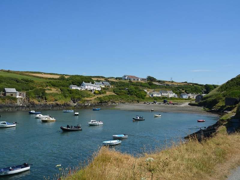 Beaches galore at nearby Abercastle