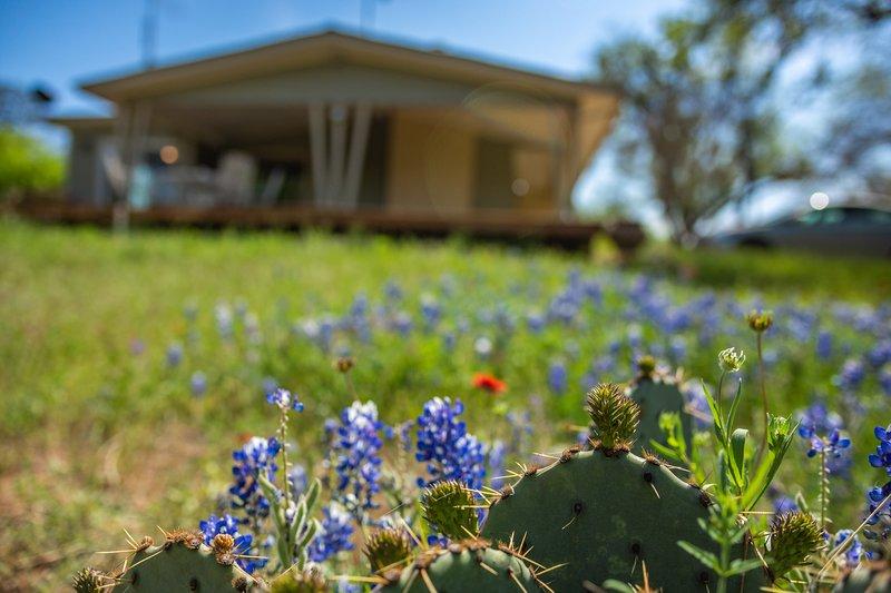 Lakeside Burnet home w/deck surrounded by nature & wildlife, location de vacances à Buchanan Dam