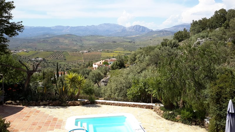 Beautiful house with swimming-pool, holiday rental in Vinuela